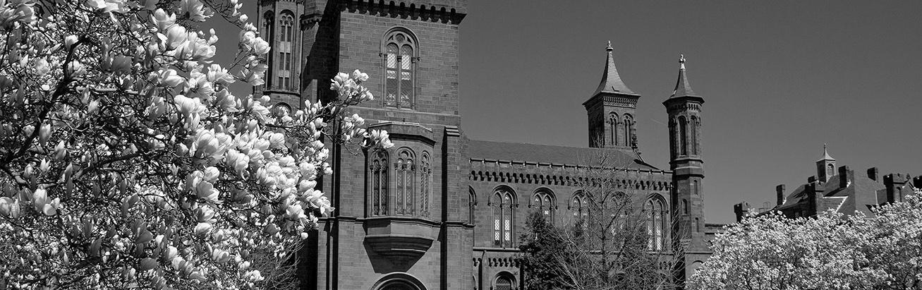 Smithsonian Castle Blossoms